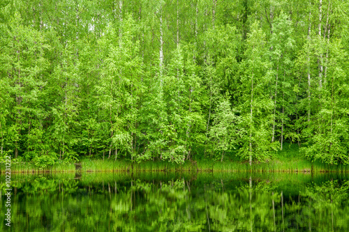 Boreal Forest reflected in river