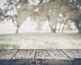 Blurred Nature Background with Instagram Style Filter