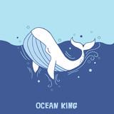 whale white