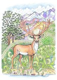 Coloring deer with antlers - 102285052