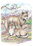 The wolf and the female wolf - 102285669