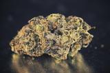 Medical marijuana dried flower