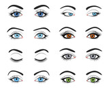 Fototapety Set of female eyes and brows image