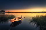 Small Orange Boat in Tall Grass - 102453831