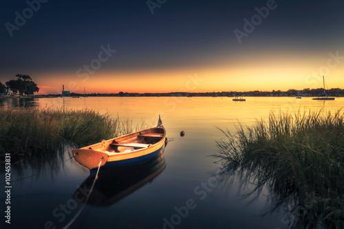 Mała Pomarańczowa łódź w Wysokiej trawie