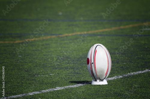 Balón de Rugby sobre el césped