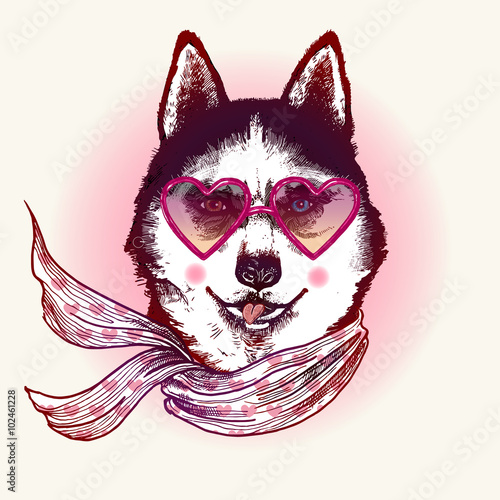 Husky in sunglasses. Fashion animal illustration - 102461228