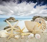 Karibischer Traumurlaub, Entspannung am Strand :) - 102487285