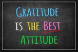 Gratitude is the best attitude on Blackboard