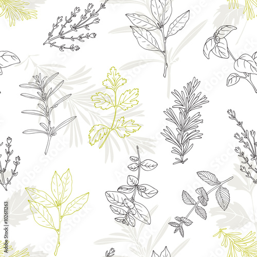 Seamless pattern with hand drawn spicy herbs. Culinary kitchen background - 102611263