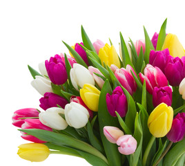 bouquet of pink, purple and white tulips