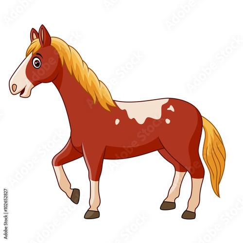 Poster Pony Beautiful horse posing isolated on white background