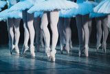 ballet swan lake. ballet statement. ballerinas in the movement. - 102654800
