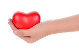 Hands holding a red heart as symbol for love and care - 102703886