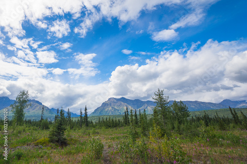 Poster Landschappen Distant Mountains and Arctic Meadow
