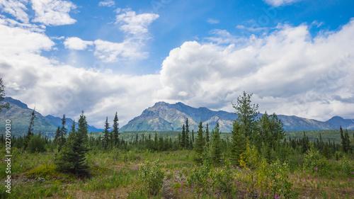 Poster Landschappen Polar Meadow in Far North