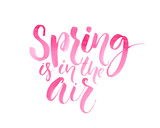 Spring is in the air. Inspirational quote about spring season, pink brush lettering isolated on white background
