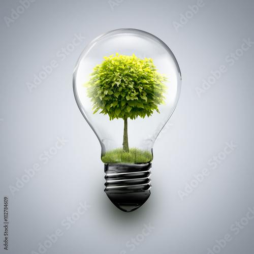tree inside light bulb buy photos ap images detailview