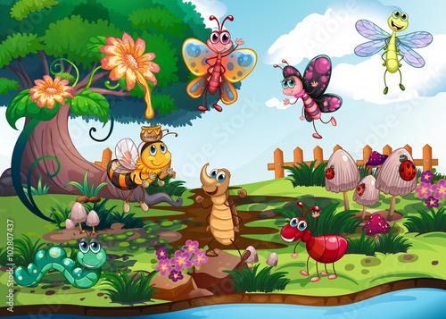 Die Insekten in der Pflanzenwelt