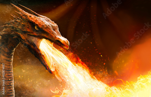 Foto op Plexiglas Draken angry dragon spitting fire