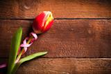 Tulpe auf Holzuntergrund