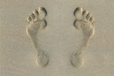 Footprint in the Sand - 102913076