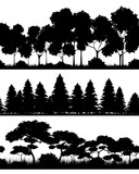 Fototapety Three forests silhouettes