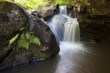 waterfall on river with fern