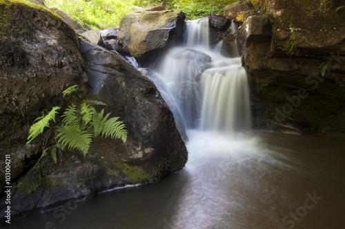 Deurstickers Canarische Eilanden waterfall on river with fern
