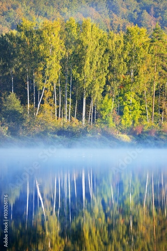 Poster Gauja river in spring morning in Sigulda, Lativa