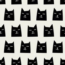 Szwu cat