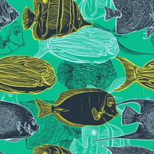Seamless pattern con collezione di tropicale insieme fish.Vintage di disegnata a mano marine illustrazione fauna.Vector nell'arte style.Design linea per la spiaggia d'estate, decorazioni.