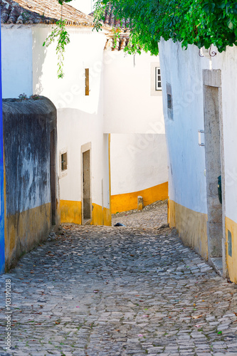 City of Obidos © George