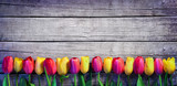 Tulips in a row on the Vintage Plank - Spring Background - 103218042