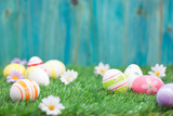 Fototapety Easter Eggs on a green grass