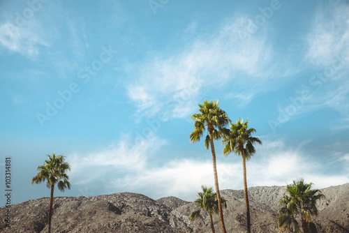 Plakat Palm Springs Vintage Movie Colony Palm Trees and Mountains