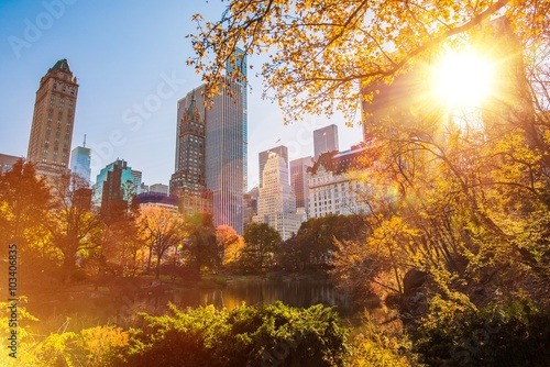 Fototapety, obrazy : New York Central Park