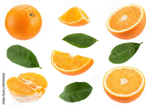 Orange citrus fruit set