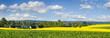 Wiosenne pola,widok na wieś.