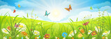 Fototapety Floral summer or spring landscape, meadow with flowers, blue sky and butterflies