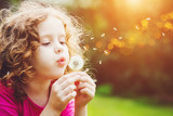 Fototapety Little curly girl blowing dandelion.
