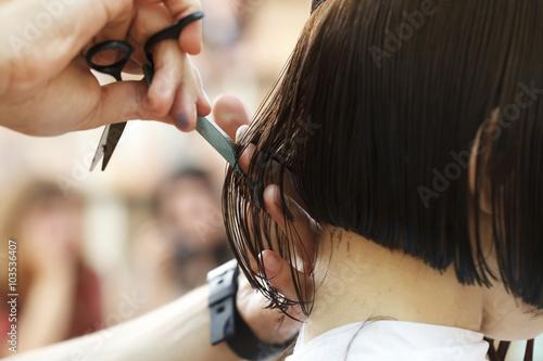 stylist hairdresser doing haircut Poster