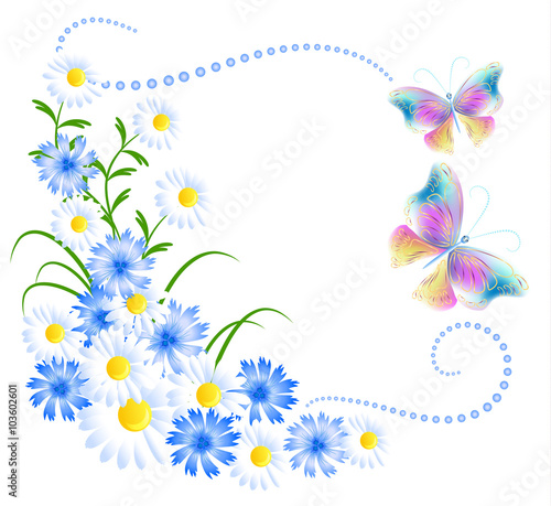Fototapeta Flowers ornament and butterflies isolated on white background