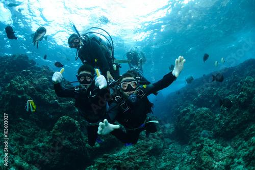 obraz lub plakat Okinawa Scuba Diving