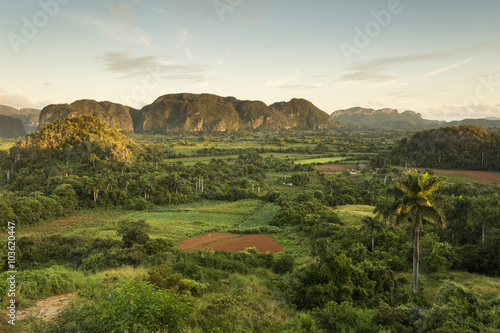 Panoramic view over landscape with mogotes in Vinales Valley ,Cu Poster