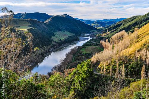 Papiers peints Rivière de la forêt River and forest in Whanganui National Park, New Zealand