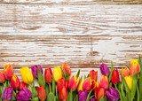 fresh tulips arranged on old wooden background