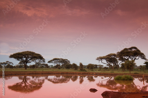 obraz PCV African landscape before sunrise