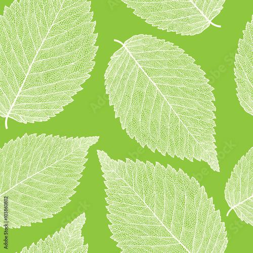 Panel Szklany leaf skeleton pattern