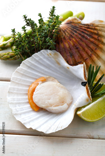 Bilden på canvas Raw fresh scallops in the shell with lime, asparagus